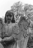 Friedhof St. Marx neu (1)