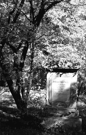 Friedhof St. Marx neu (2)
