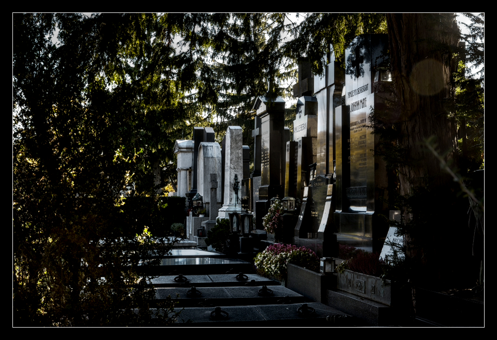 Friedhof V