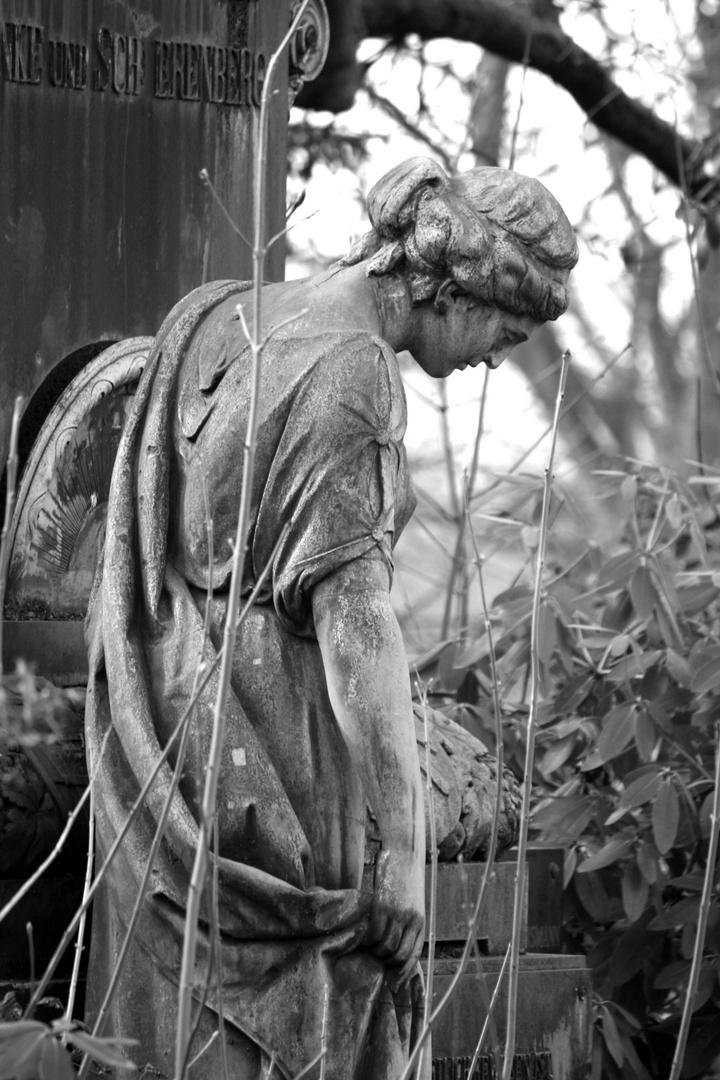 Friedhofsbild