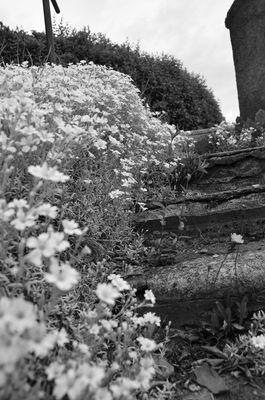 Friedhofstreppen