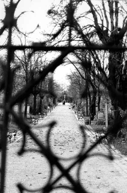 Friedhoftor