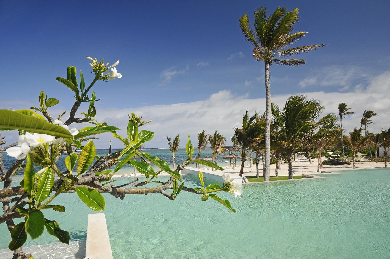 Friendly Island Maurice