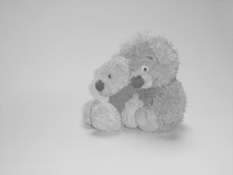 friendship -3-