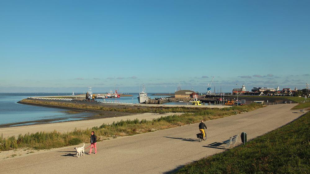 Friesland (NL): Die kleine aber feine Hafenstadt Harlingen