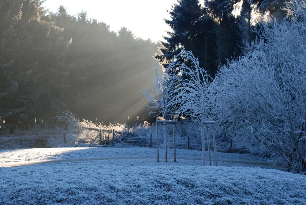 Frimas hivernaux