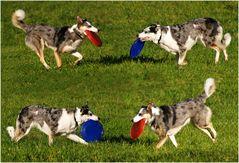Frisbee-Ballet