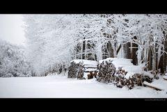Frisch fallender Schnee (2)