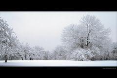 Frisch fallender Schnee