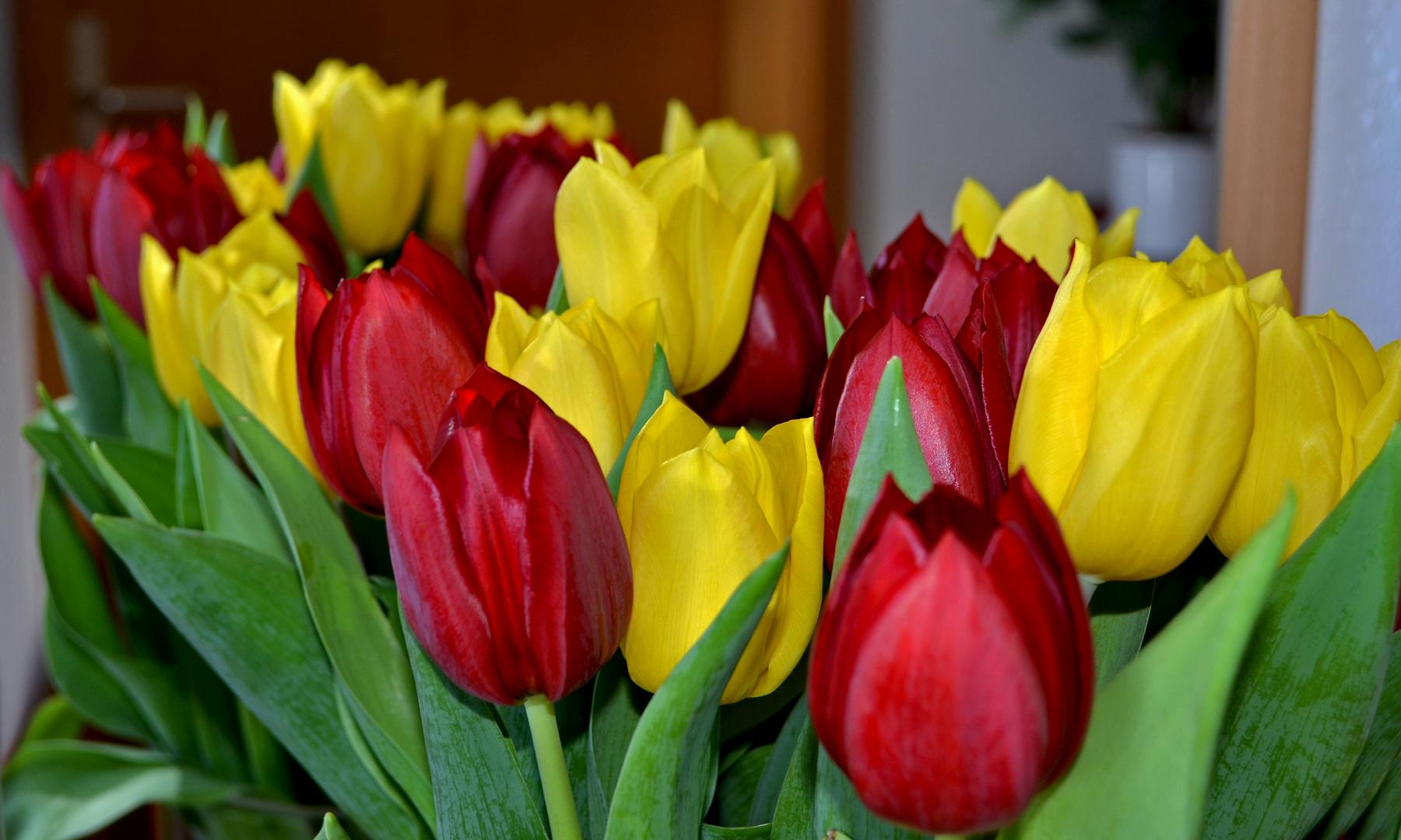 frische Blüten .....