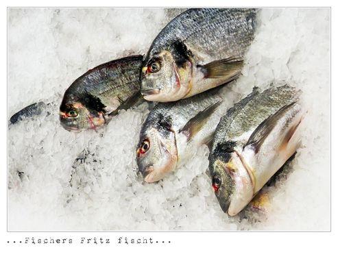 ...frische Fische...