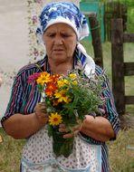 Frische Gartenblumen