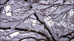 Frischer Schnee...