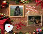°° Fröhliche Weihnachten.... °°