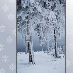 Fröhliche Weihnachten Euch allen!!!