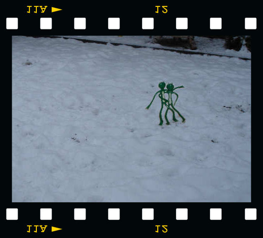[Froggi & Groggi im Schnee]