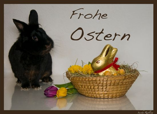 ** Frohe Ostern **