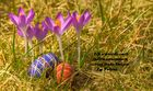 Frohe Ostern 2012