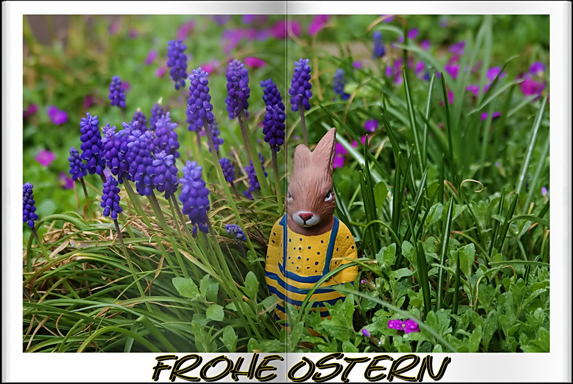 Frohe ~ Ostern