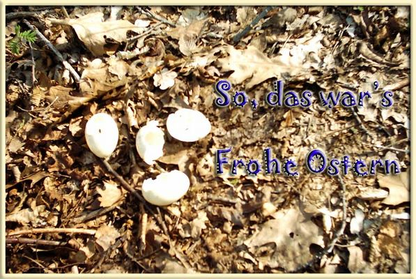 Frohe Ostern ;-))