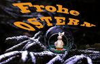 Frohe Ostern !!!!!