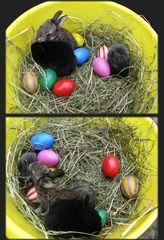 Frohe Ostern! Aber eine Frage hätt ich noch: