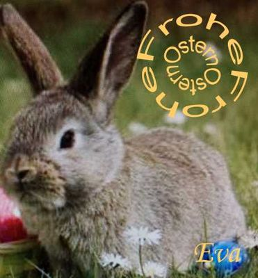 Frohe Ostern an alle meine Freunde