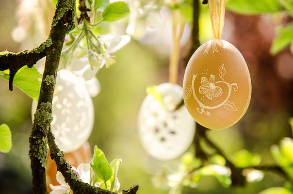 Frohe Ostern! ...
