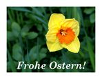 ~ Frohe Ostern ~