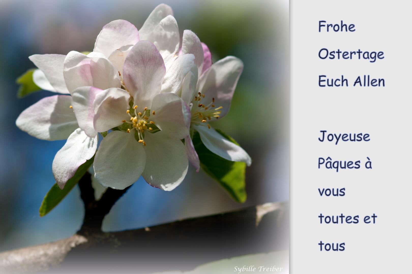 Frohe Ostern - Joyeuse Pâques