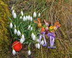Frohe Ostern wünsche ich allen, die hier vorbeischaun.