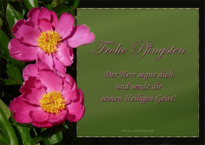 Frohe Pfingsten / Spruchkarte mit Segenswunsch
