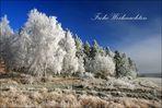 Frohe, ruhige und besinnliche Weihnachten ...