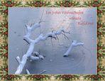 Frohe und entspannte Weihnachten ...