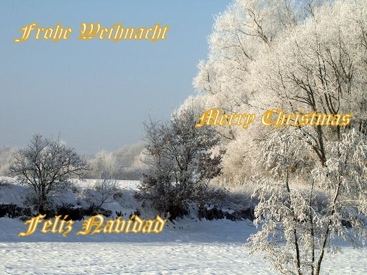 Frohe Weihnacht und einen guten Rutsch