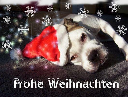 Frohe Weihnachten, auch von mir...