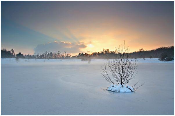 Frohe Weihnachten - Buon Natale - Feliz Navidad - Merry Christmas - Noel joyeux...