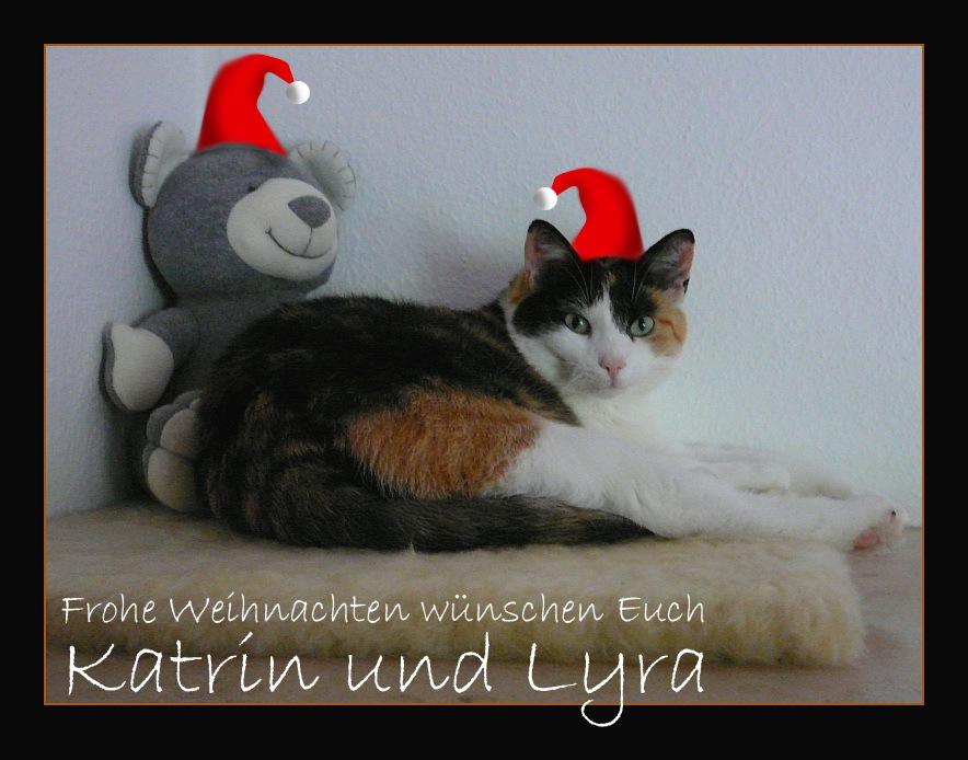 Frohe Weihnachten und ein warmes Plätzchen am Ofen...
