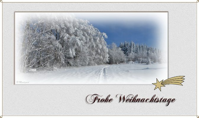 ~ frohe Weihnachtstage ~