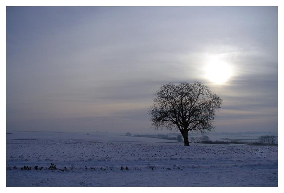 Frohes neues (Foto)Jahr 2006!