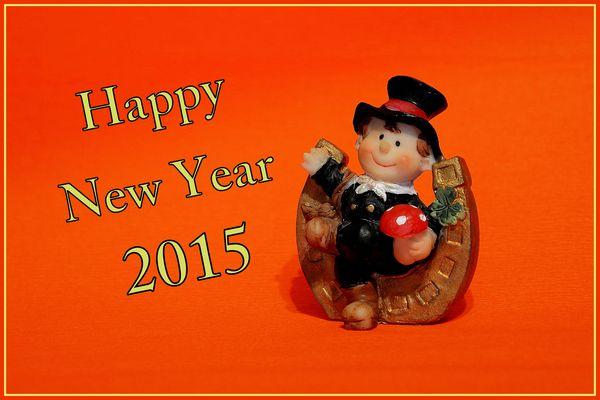 * Frohes neues Jahr 2015 *