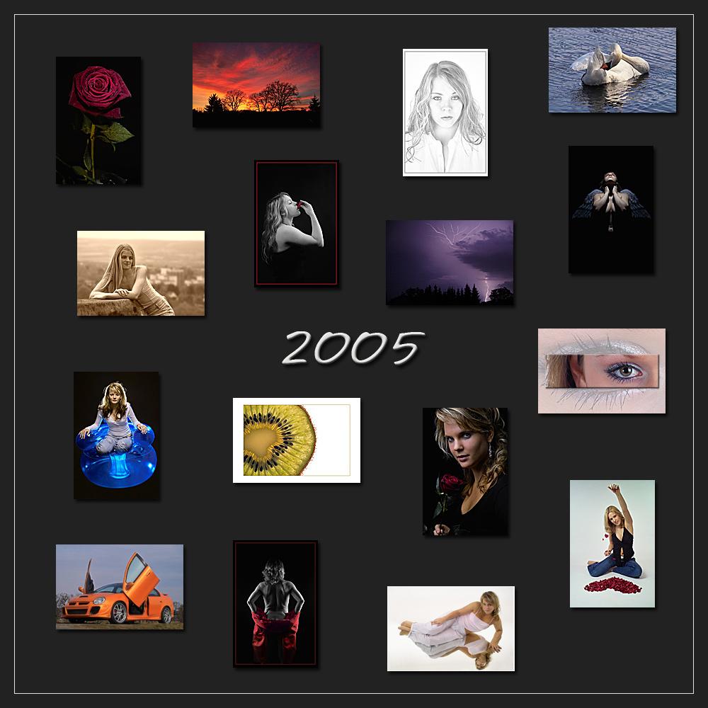 Frohes Neues Jahr - Das war 2005