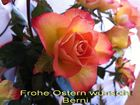 **** Frohes Osterfest ****