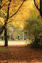 frohlockende Herbstzeit