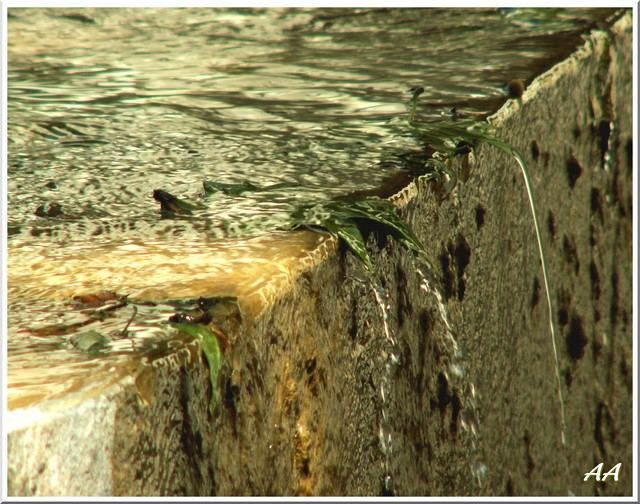 Frontière d'eau