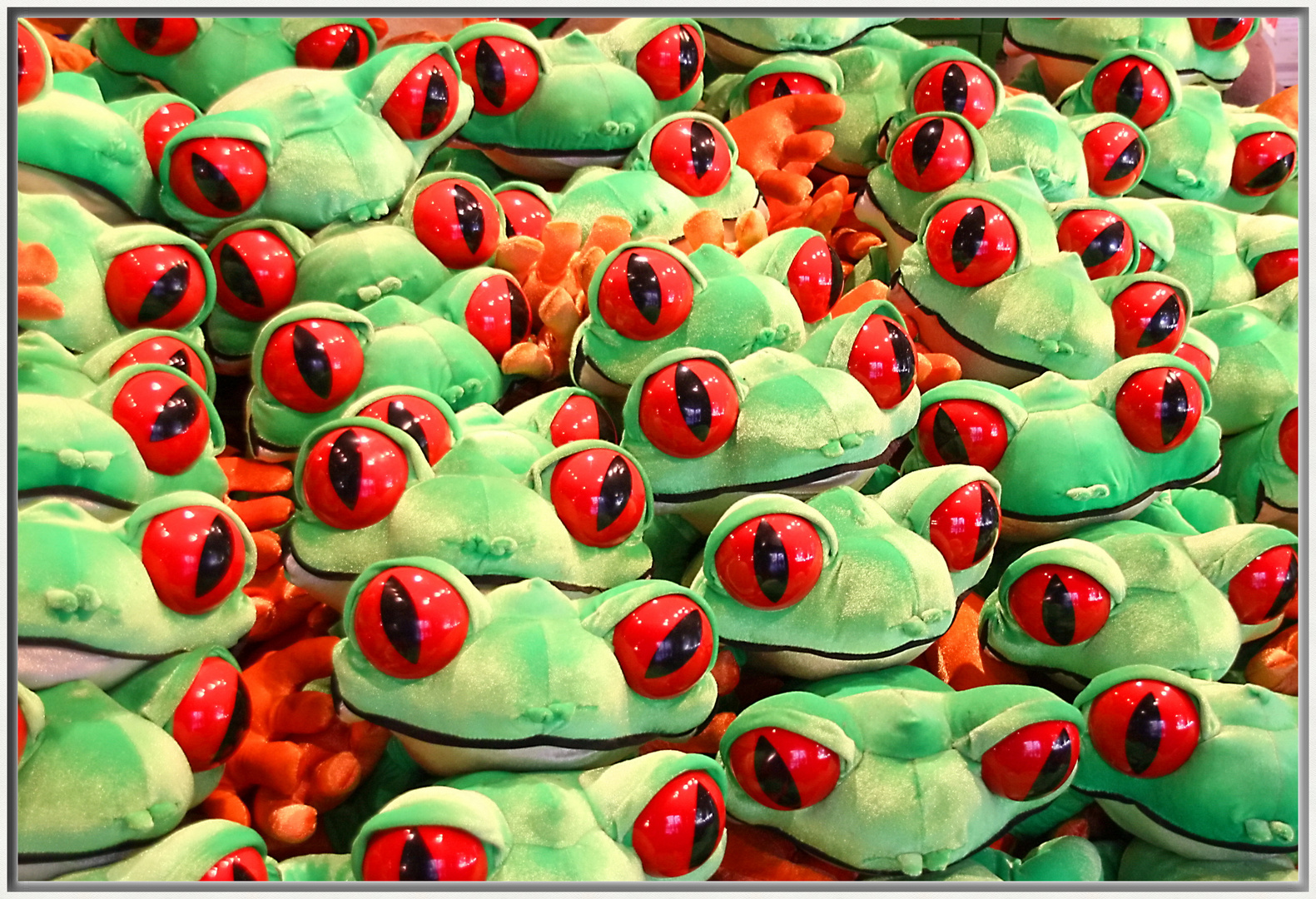 Froschn sehen alles...