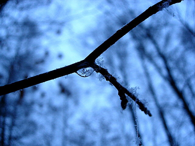 Frost am Morgen