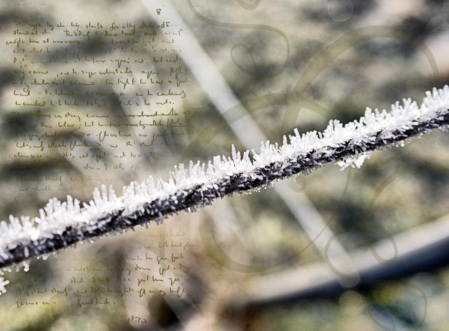 Frost-Art