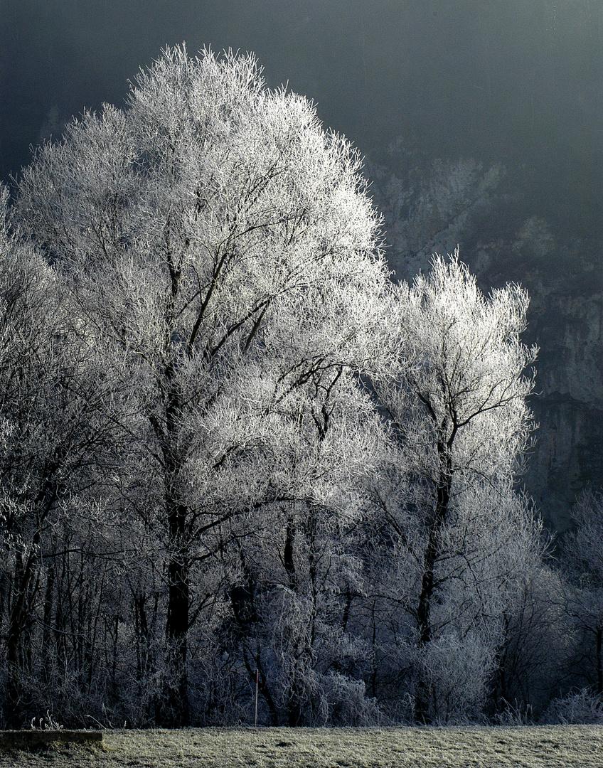 Frost beim Ziller
