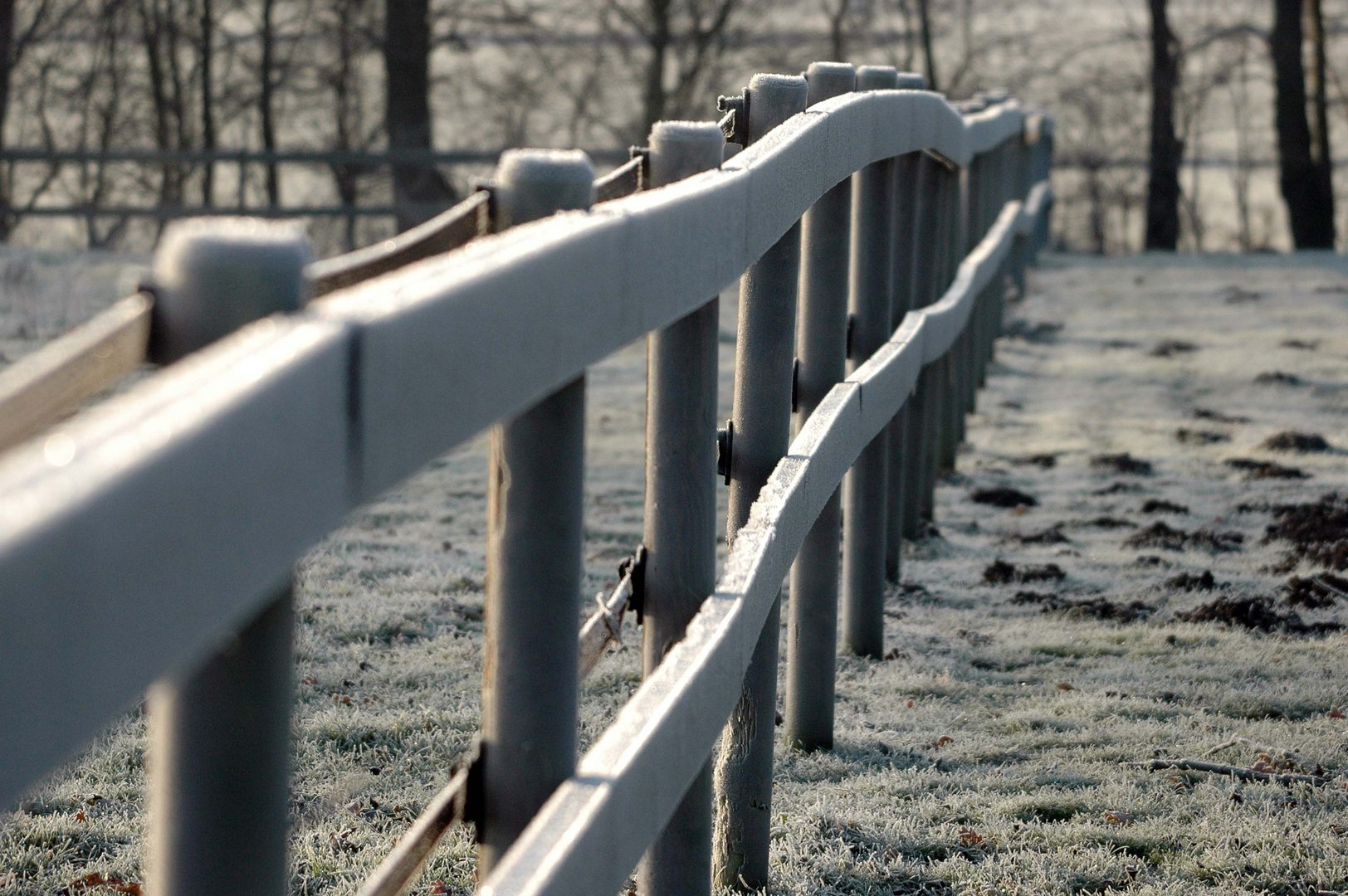 Frost ohne Ende!
